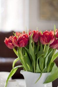 kwiaty dla dbajacych o piekno